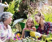 Image of Grandmother, mother and daughter gardening together